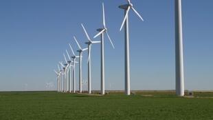 Khu sản xuất điện bằng sức gió Brazos Wind Farm tại tiểu bang Texas (Hoa Kỳ).