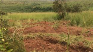 Fosse commune découverte aux alentours de Tshimbulu.