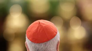 图为教皇方济各2016年2月22日在梵蒂冈宣教