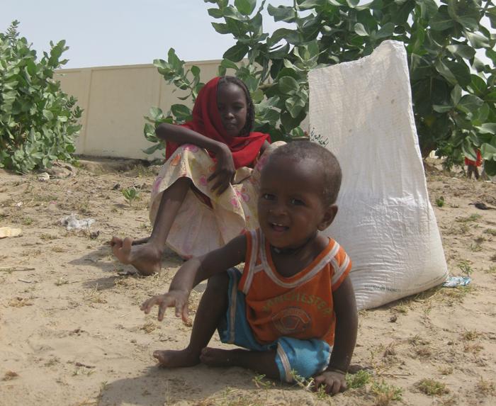 A desnutrição atinge principalmente crianças entre 6 meses e 5 anos.