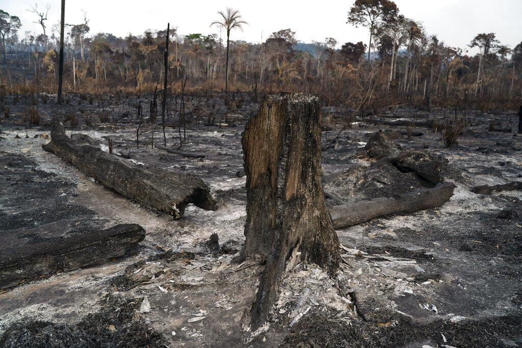 Destaque no jornal Le Monde desta quinta-feira (02/07) para a volta das queimadas na Amazônia que registraram em junho o maior número de focos dos últimos treze anos.
