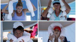 Các tay vợt  từ trái trên xuống:  Camila Giorgi ( Ý), Maria Sharapova (Nga), Kei Nishikori (Nhật) và Alize Cornet (Pháp)  dùng túi đá để chống chọi với cái nóng hơn 40°C ở Melburn, ngày 16/1/2014.