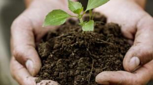 La dernière réforme de la PAC adoptée en 2013 initie une pratique plus écologique de l'agriculture.