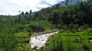 Garut, West Java, Indonesia.