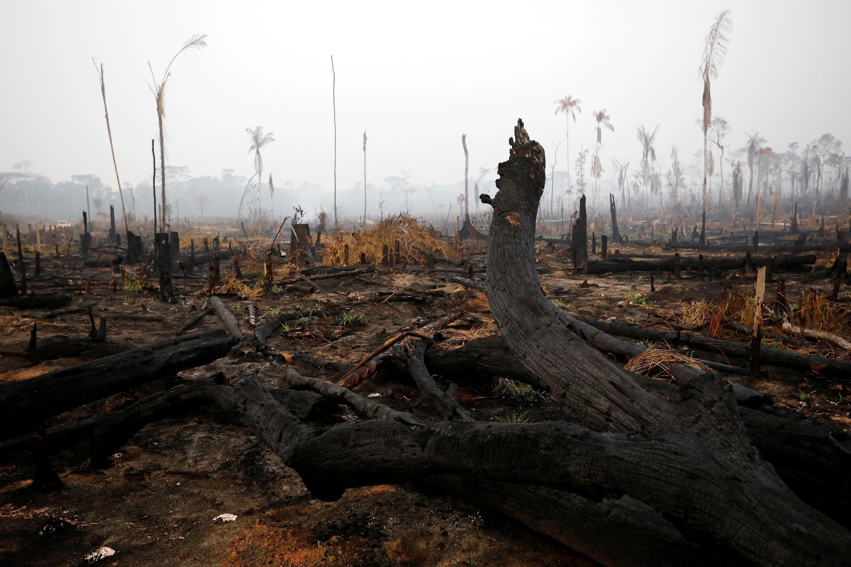 La forêt amazonienne après un feu à Boca do Acre, dans l'état d'Amazonas, le 24 août 2019.