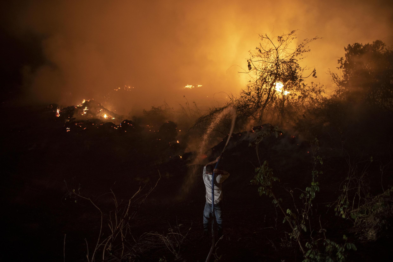 El Pantanal de Brasil - uno de los mayores humedales tropicales del mundo - está sufriendo sus peores incendios en más de 47 años.