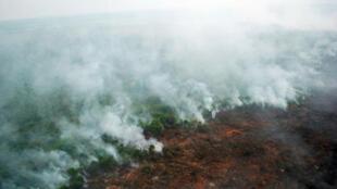 Cháy rừng tại đảo Sumatra - Indonesia. Ảnh chụp từ trực thăng của Ủy Ban Quốc Gia Quản Lý Thiên Tai Indonesia, ngày 10/06/2016.