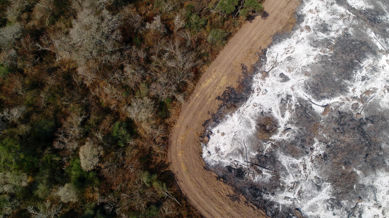 En Argentina, se inician incendios forestales con el objetivo de desarrollar un cultivo de soja.
