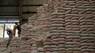 Dans les pays en développement, la demande en céréales est déjà insatiable, de l'Afrique du Nord à l'Indonésie.