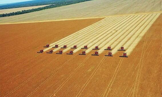 Colheita de soja no Mato Grosso