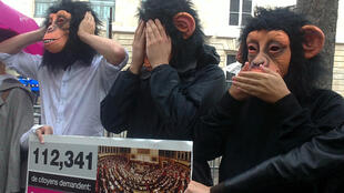 See no evil, hear no evil, speak no evil: Members of the online petition site Avaaz protested in front of the National Assembly on Tuesday to point the finger at the lack of transparency in MP salaries.
