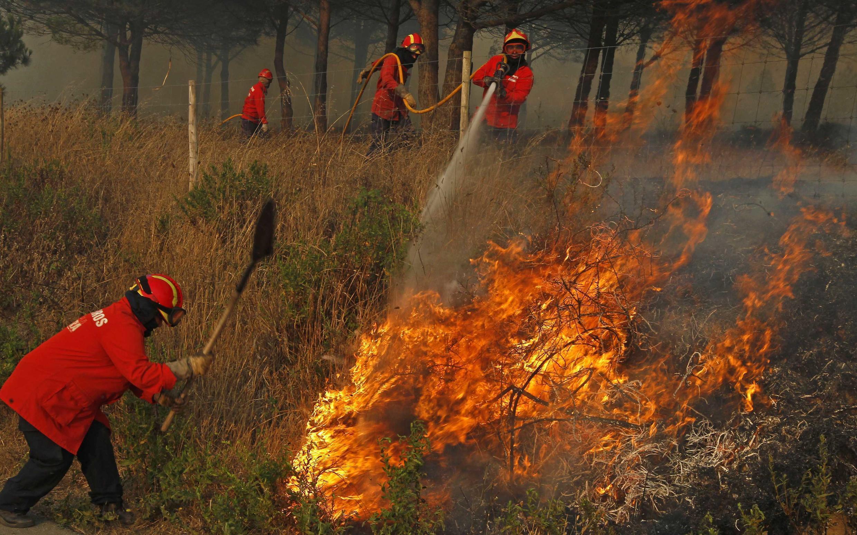 Bombeiros lutam contra fogo no vilarejo de Cintra, próximo de Lisboa