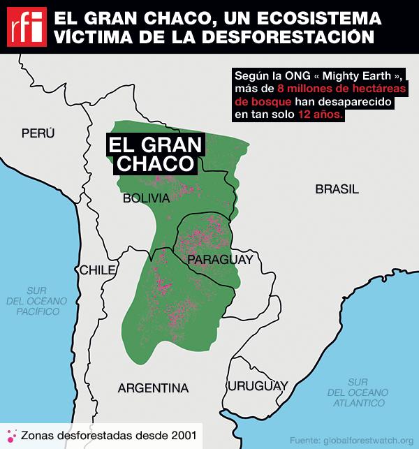 Tan solo en el mes de enero de 2018 han sido desforestadas 15 125 hectáreas de la región del Chaco.
