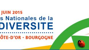Les 5e assises de Dijon se tiennent jusqu'au 12 juin 2015