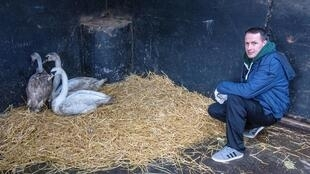 Animal Manager of Wildlife Rehabilitation Ireland, Dan Donoher, said the hospital is preparing for 'orphan season'