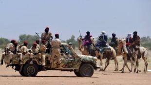 En 2012, 18 tonnes de cocaïne ont transité par le Sahel, selon un rapport de l'ONU