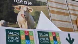 Idéale, la vache égérie du Salon de l'Agriculture 2020, une charolaise qui s'affiche même sur le Parc des expositions de Porte de Versailles, à Paris.