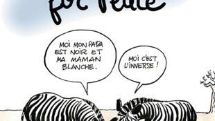 L'affiche de Cartooning for Peace pour l'exposition itinérante française.