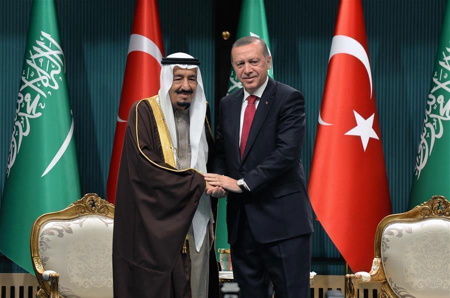 Roi Salman_Erdogan