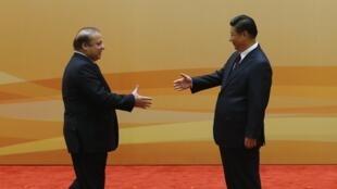 Le président chinois Xi Jinping (R) rencontre le Premier ministre pakistanais Nawaz Sharif, à Pékin, le 8 novembre 2014.