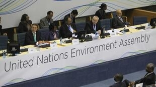 Delegates attend the first United Nations Environment Assembly (UNEA) in Kenya's capital Nairobi
