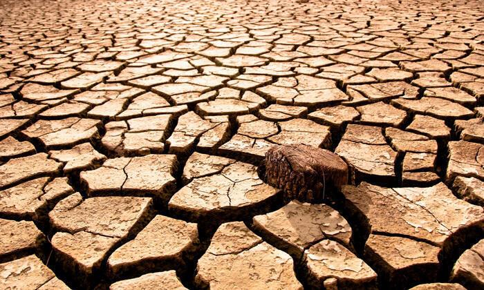 Segundo Dom Pio Hipunhaty, serà necessária uma ajuda de vários meses, até à próxima colheita em Maio do ano que vem.