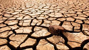 Une importante sécheresse sévit dans l'ouest de l'Inde.