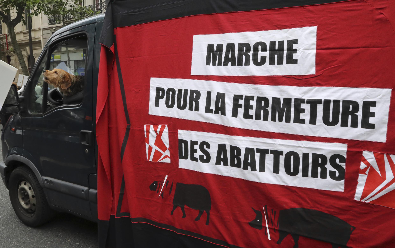 Участники организации L214 требуют закрыть французские скотобойни.