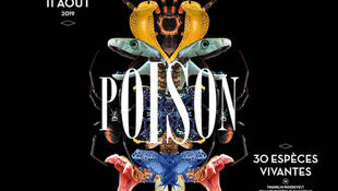 Afiche de la exposición Poison en el Palais de la découverte.