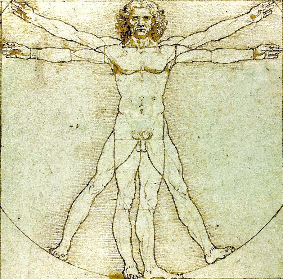 L'homme de Vitruve, selon Léonard de Vinci.