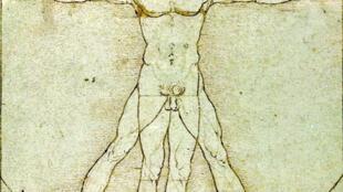 «L'Homme de Vitruve», de Léonard de Vinci.