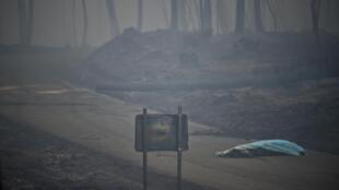 آتشسوزی گسترده در منطقه کوهستانی پدروگائو گرانده در استان لیریا در مرکز پرتغال