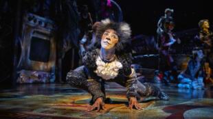 Cats, la comédie musicale mythique est jusqu'au 10 janvier au Théâtre Mogador, à Paris.