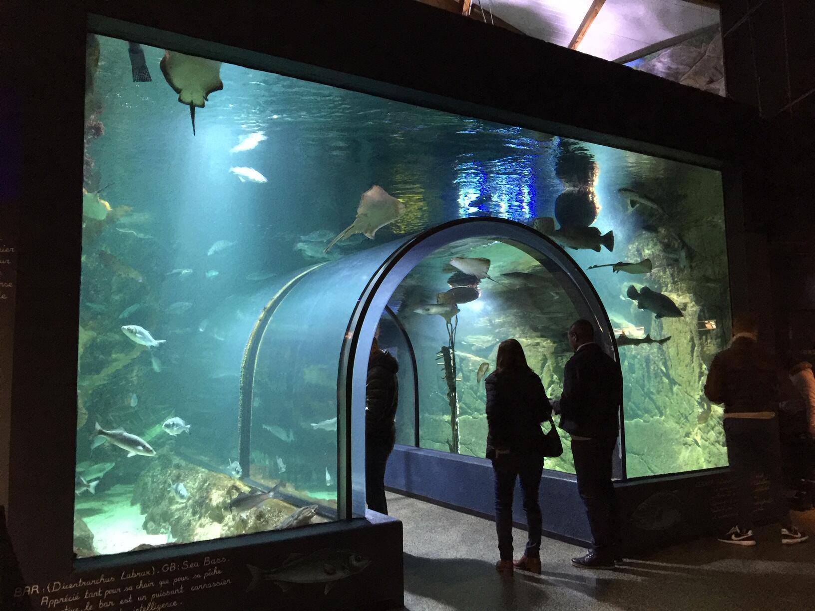 Océarium海洋博物館