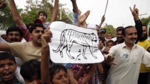 Un enfant tend l'image d'un tigre, le symbole électoral du PMLN de Nawaz Sharif