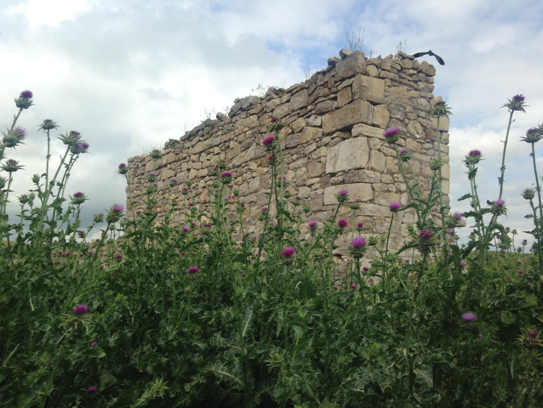 Руины в Джебраиле