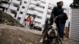 Une femme promène son chien près de son logement temporaire, dans qu'un quartier de Mexico, qu'elle habite depuis le tremblement de terre de 2017, en attente d'être relogée.