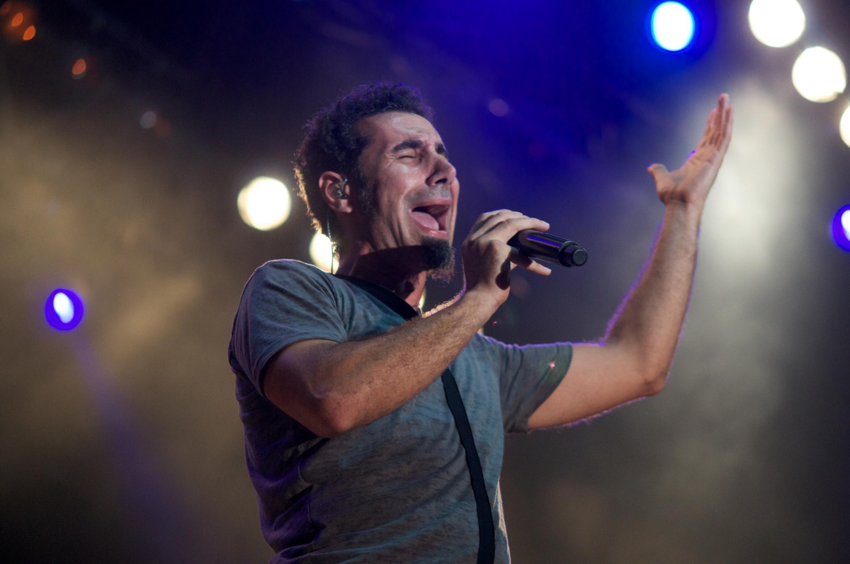 Рок-музыкант Серж Танкян и другие предствители армянской диаспорты призвали правительство Армении начать демократические перемены.