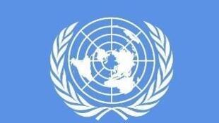 聯合國標識