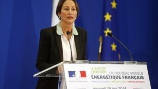 Министр экологии Франции Сеголен Руаяль на пресс-конференции 18 июня 2014 в Париже.