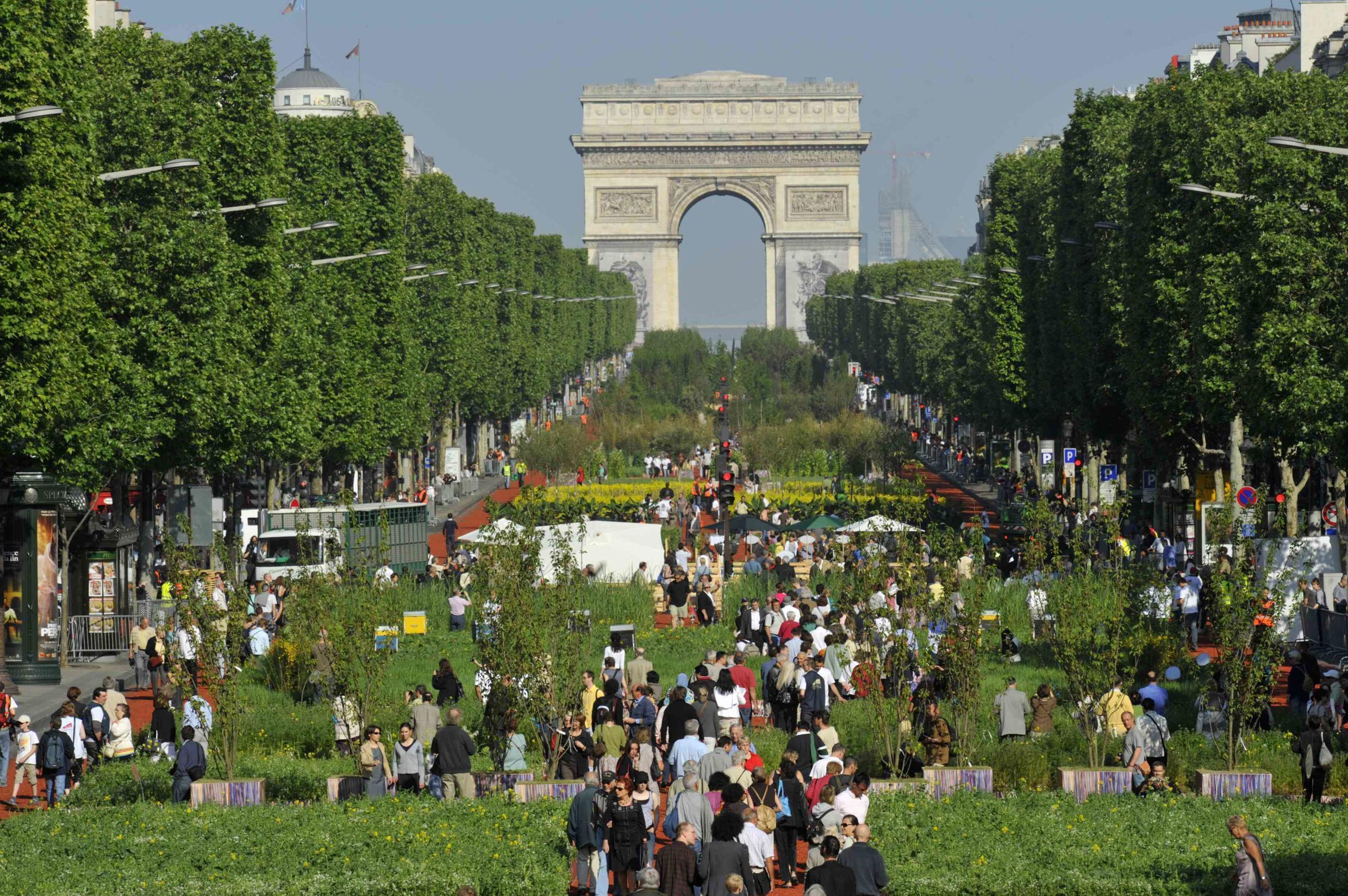 Planted fields and trees on Paris' Champs-Élysées, with the Arc de Triomphe in the background