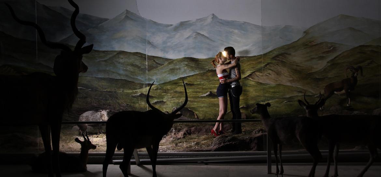 """نمایشگاه """"دیوراما"""" در پاریس"""