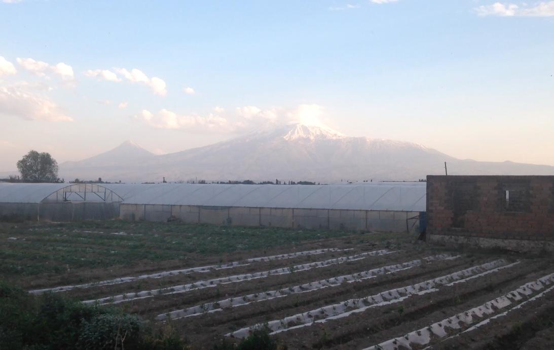 Священная для армян гора Арарат