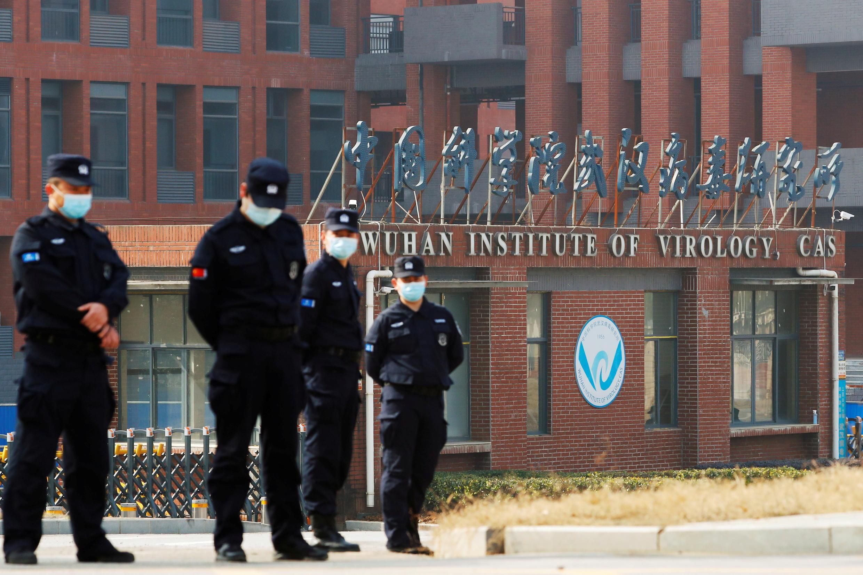 Wuhan laboratorio
