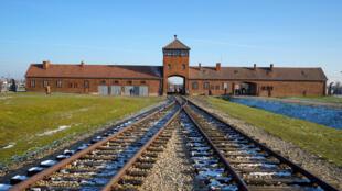 Auschwitz camp nazi pologne