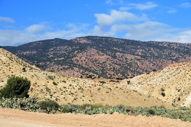 Le mont Mghilla situé à proximité de Kasserine à environ 360 kilomètres au sud de Tunis.