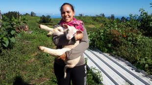 Julie, 27 ans, éleveuse de brebis et de poules pondeuses aux Avirons, Ile de La Réunion.