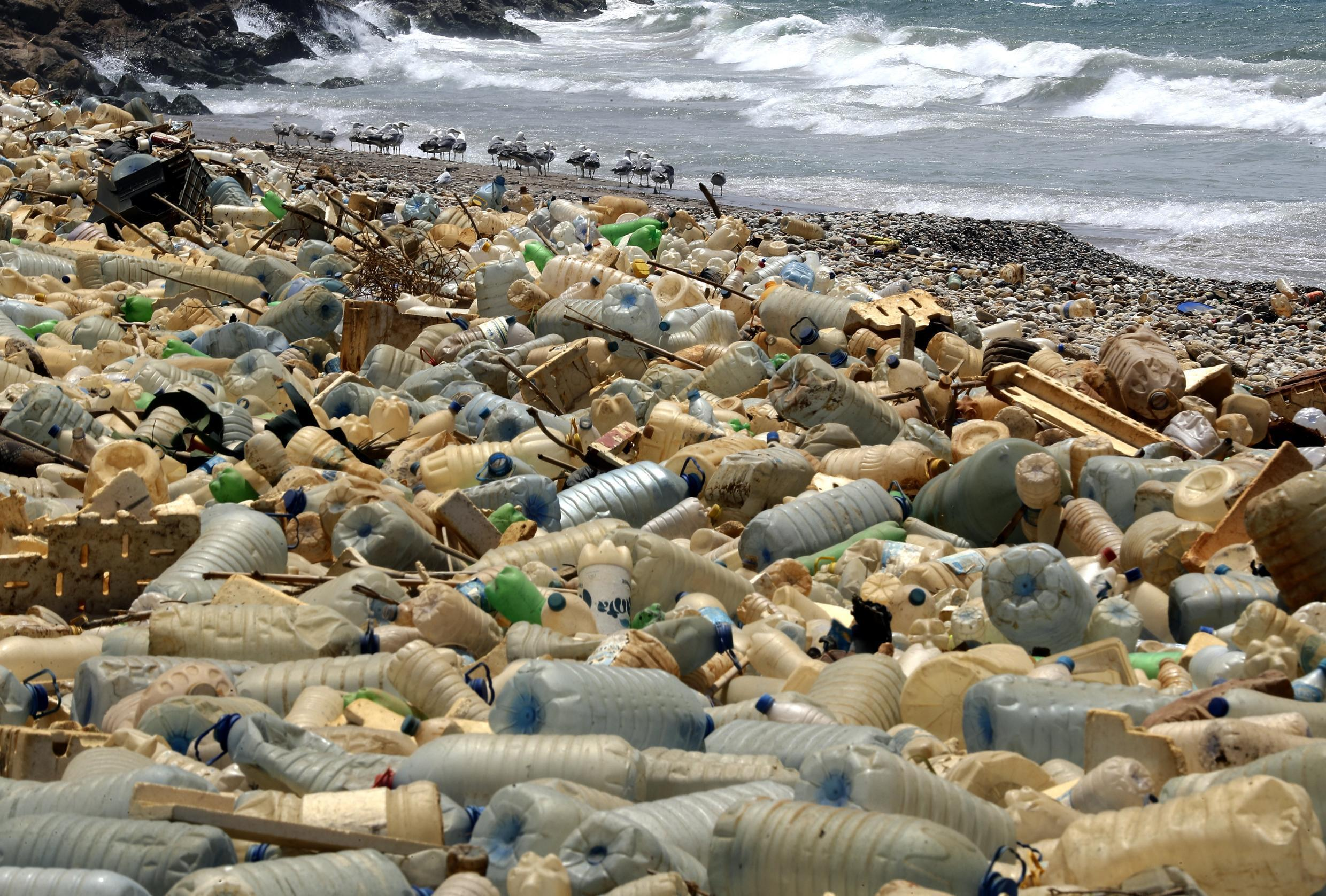 Plastic bottles piling up at the shores of the Mediterranean Sea.