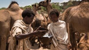 Slowfood voudrait valoriser les produits africains en Europe et sur le continent africain