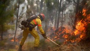 Enquanto polícia procura culpados, bombeiros continuam combatendo as chamas